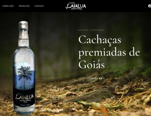 Website design for a leading beverage company